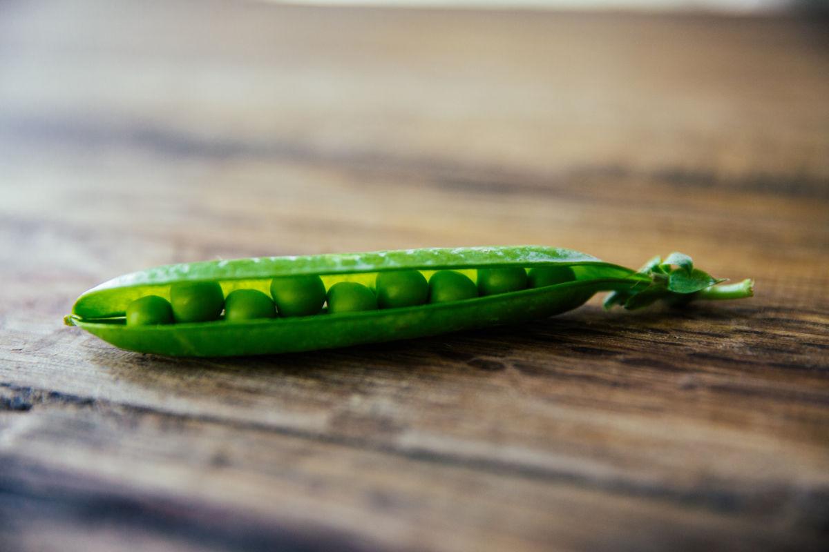 Humble Peas
